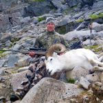 Dall Sheep Guide